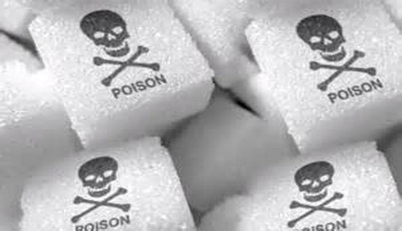 Big Sugar - 73 Million Deaths